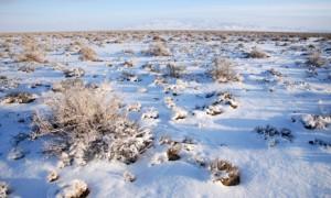 çöle yağan ka 300x180 Çöle Yağan Kar Gerçek midir yoksa Serap mıdır?