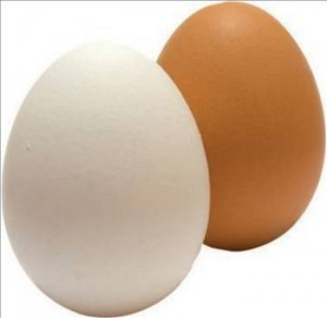 yumurta sarı beyaz