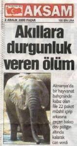 öldüren fil
