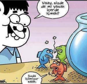 Karikatür (72)